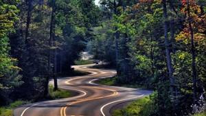 wavy road