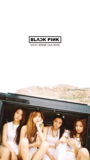 BLACK 粉, 粉色