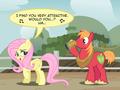 10      - my-little-pony-friendship-is-magic photo