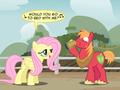 11      - my-little-pony-friendship-is-magic photo