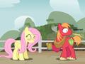12      - my-little-pony-friendship-is-magic photo