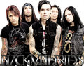 BVB                       - andy-sixx photo