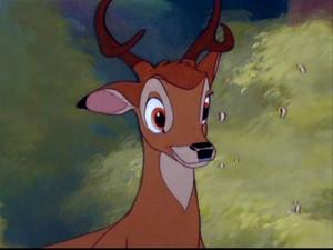 Bambi Twitterpated