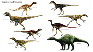 Carnivorous डायनासोर