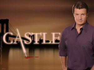 kasteel (1)