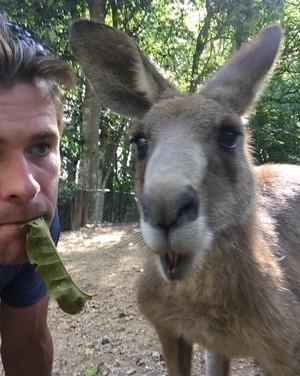 Chris Hemsworth Instagram pics