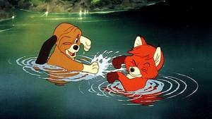 Copper Splashing Tod