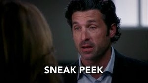 Derek and Meredith 340