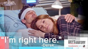 Derek and Meredith 347