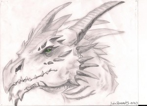 Dragon pencil art