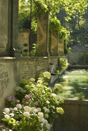 Dreamy Gardens