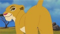 Duba the Lioness with Background