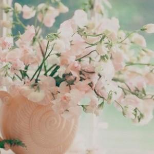 bunga 23