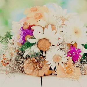 flores 37