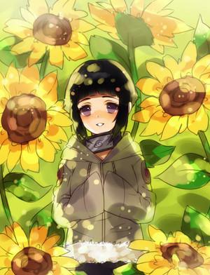 Hinata Hyuga // Naruto