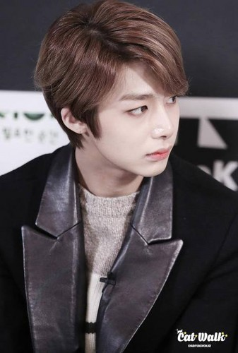 Monsta X fond d'écran possibly containing a business suit, a well dressed person, and a portrait entitled Hyungwon 💋 ❤