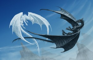 Ice dragon vs Night dragon