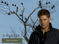 In Search Of... Hitchcock's Grave - dean-winchester wallpaper