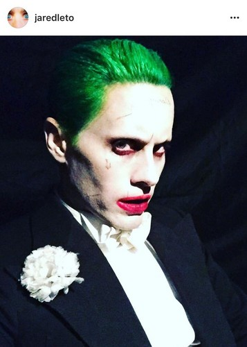 Suicide Squad वॉलपेपर titled Jared Leto as The Joker