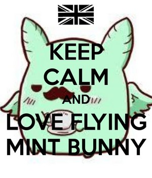 Keep Calm and Amore Flying Mint Bunny