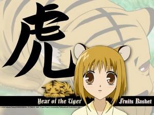 Kisa the jaar of the tiger