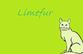 Limefur the Blazeclan cat - make-your-own-warrior-cat fan art