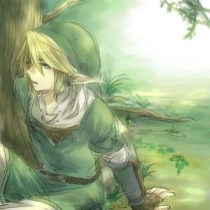 Link in a forest