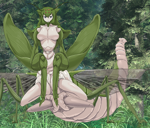 Monster Girl Quest پیپر وال probably with a کیلا titled Mantis Girl