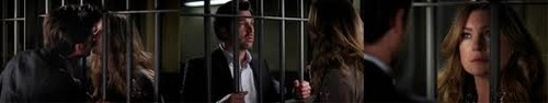 Grey's Anatomy Couples picha entitled Meredith and Derek 263