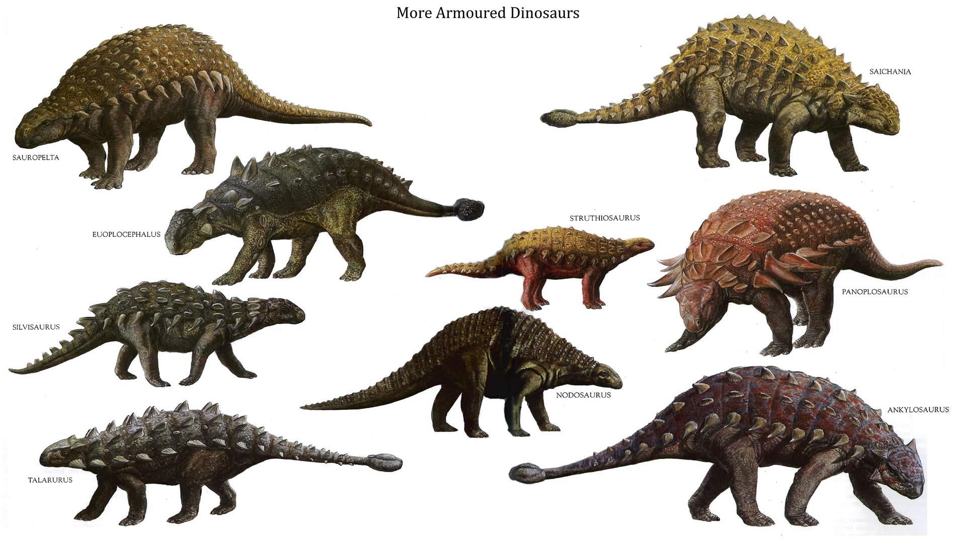 もっと見る Armoured 恐竜