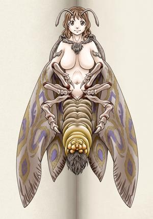 bướm, bướm đêm Girl