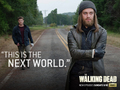 the-walking-dead - New World wallpaper