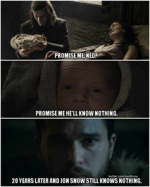 No one can keep a promise like Eddard Stark