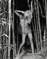 Pamela Anderson - pamela-anderson photo