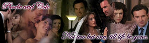 Phoebe/Cole Banner - Vows