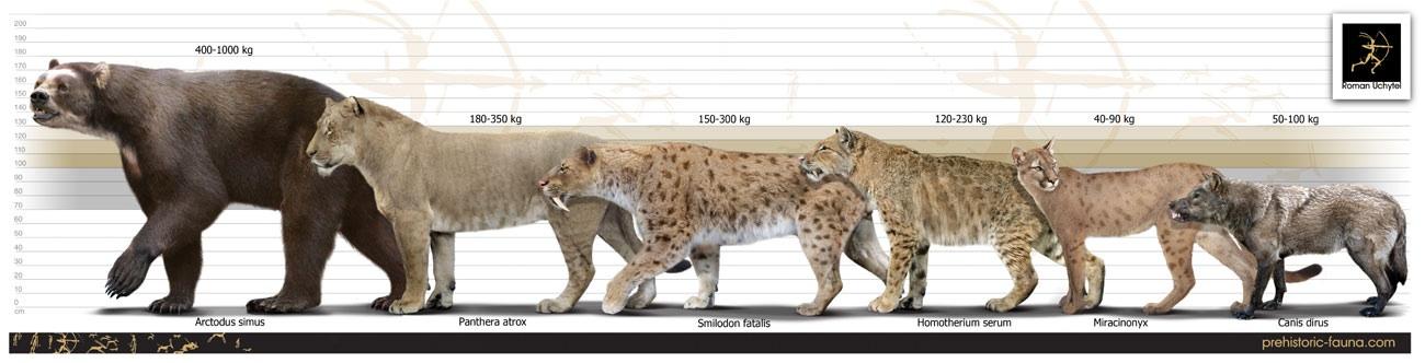 Prehistoric North American Carnivores