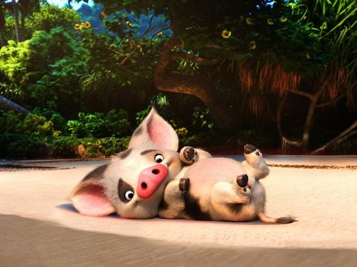 Moana wallpaper titled Pua
