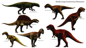 Really Large Carnivorous dinosaurios