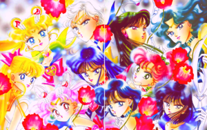 Sailor Moon Infinity