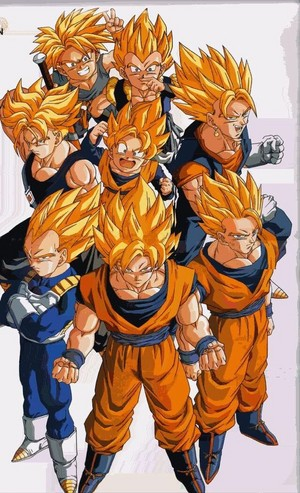 The Super Saiyans:Goku,Vegeta,Gohan,Gogeta,Goten,Future Trunks,Trunks kid