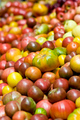 Tomatoes - fruit photo