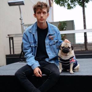 Troye Sivan and Pug