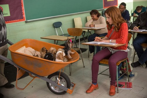 Unbreakable Kimmy Schmidt wallpaper with a barrow titled Unbreakable Kimmy Schmidt - Kimmy