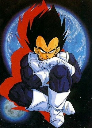 Vegeta Prince of the Saiyans dbz characters 29811383 360 500