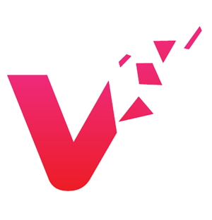 Visual Logo1
