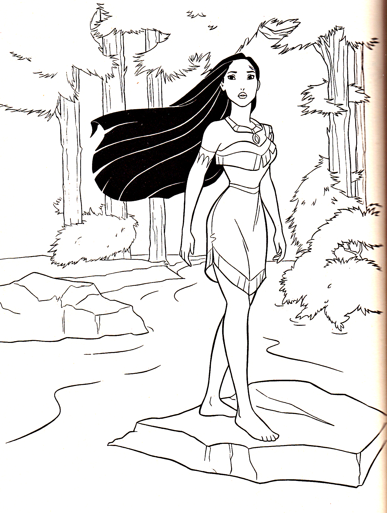 Coloring pictures of pocahontas The Lion King - Wikipedia