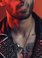 Zayn for Paper Magazine  - zayn-malik photo