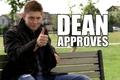 dean - supernatural photo