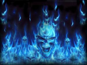 skull wallpaper cool
