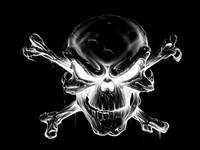 8589130429969 Harley Davidson Logo Fondo De Pantalla Hd